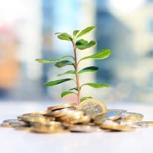 Die Investitionskosten gestalten sich bei allen Plattformanbietern flexibel